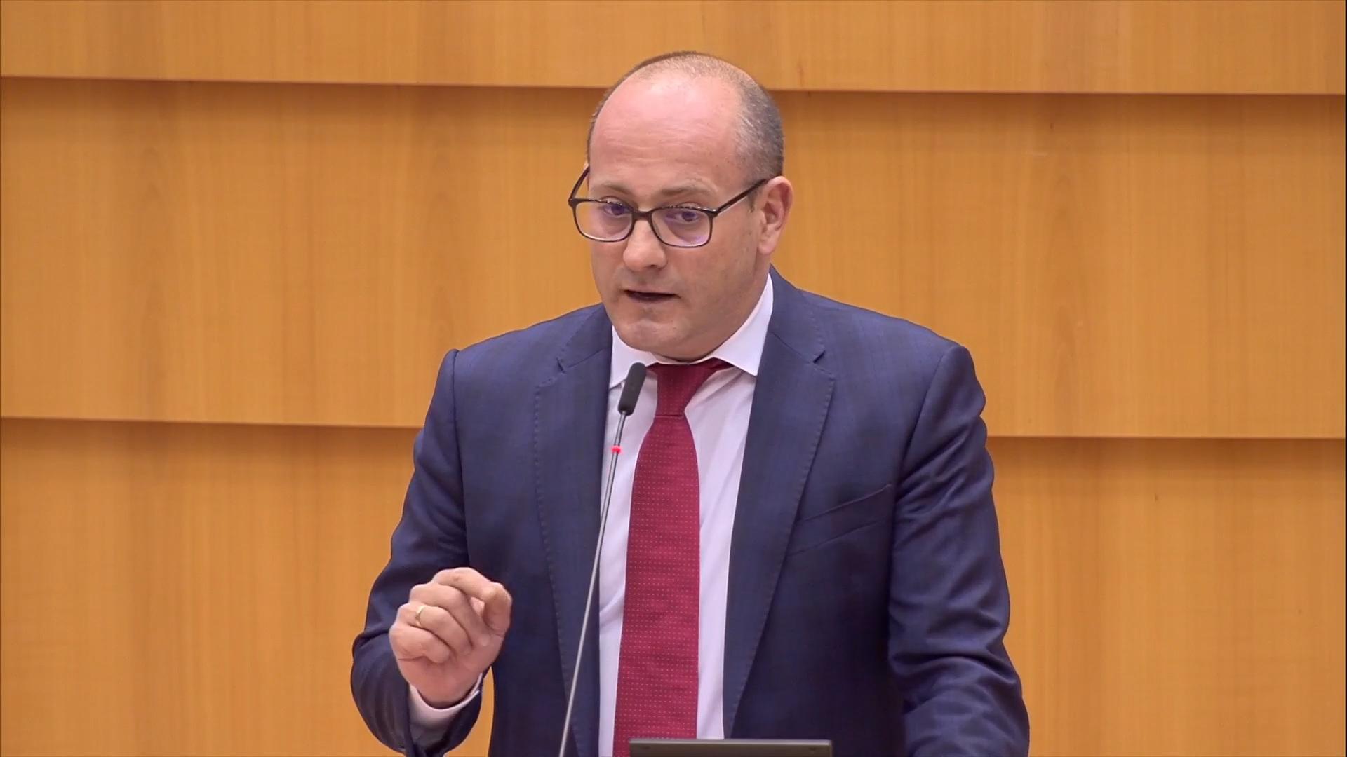 Радан Кънев изказване Европейски парламент България