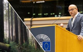 Радан Кънев, ЕП гласуване вековни гори