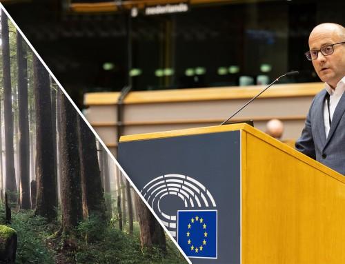 Гласувах в защита на първичните и вековни гори в Европа